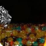 パスピエ「ネオンと虎」と私
