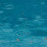 雨の日に聴きたい名曲12選(明るめ曲&しんみり曲)