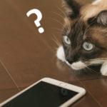 【解決方法】インスタ(Instagram)の投稿を、Twitterに画像つきで自動的に投稿させたが、何故か同じ内容が2回投稿されてしまう